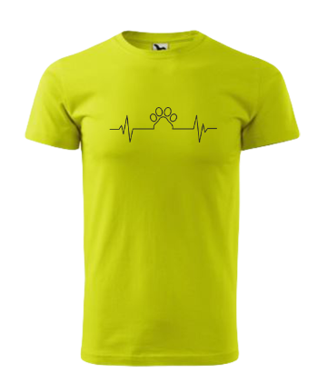 EKG labka 01