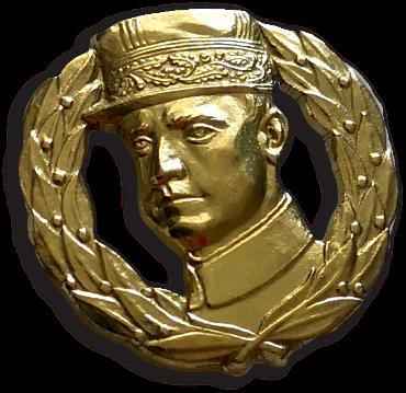 Pin Štefánik pozlatený 15mm
